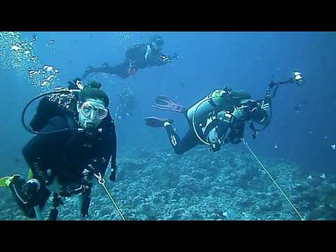 Group Trips | Palau and Truk Lagoon with NDO