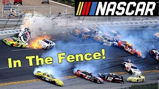 THEY'RE ALL IN THE FENCE!