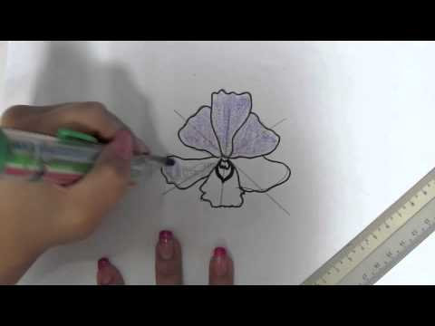 Plant Drawing Step By Step