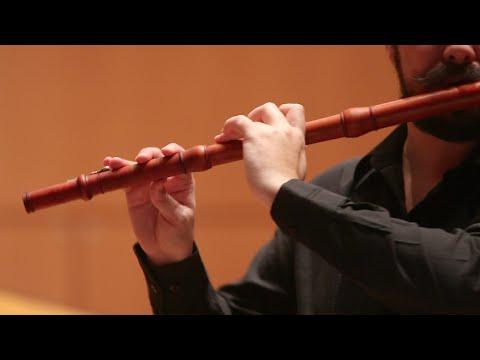 Telemann : Concerto per flauto dolce e flauto traverso (IV. Presto)