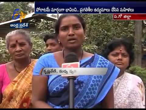 Alcohol Free Villages in West Godavari Made by Women: A Report