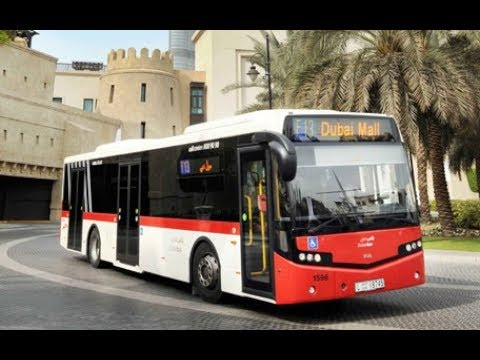 Don't do these mistakes on the  bus in Dubai