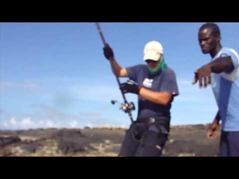 SHARK FUNK - INSHORE EXPERIENCE FISHING CAPE VERDE SAL ISLAND