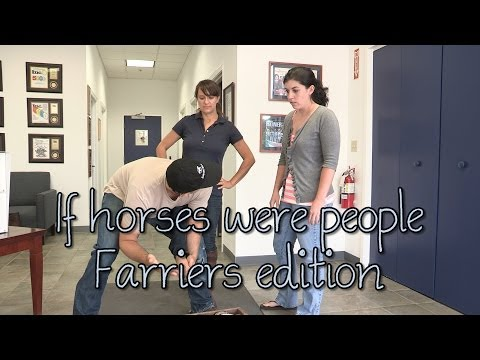 if we were dating horses wouldn't be called horses