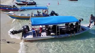 Seahorse Diver Perhentian Island Malaysia