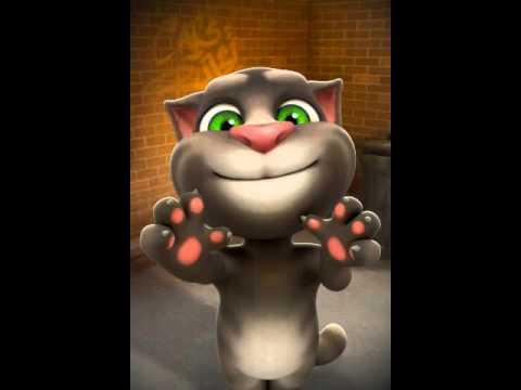 Говорящий кот Умора видео смотреть онлайн Говорящий кот
