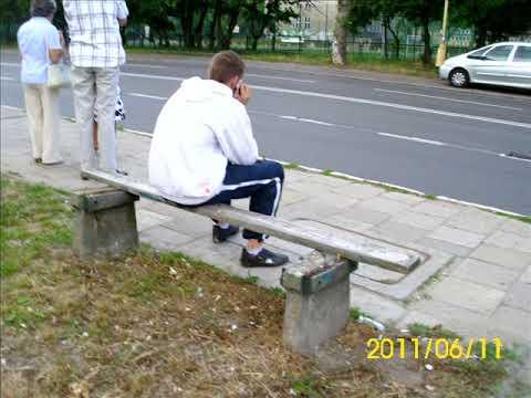 ŁaweczkaTortur  dla palaczy papierosów w Szczecinie naprzeciw usychającego platana