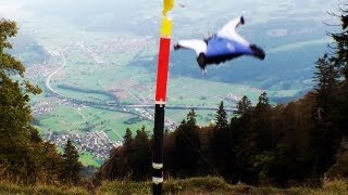 Alexander Polli Wingsuit Downhill Gate Bashing: Precision Of Human Flight