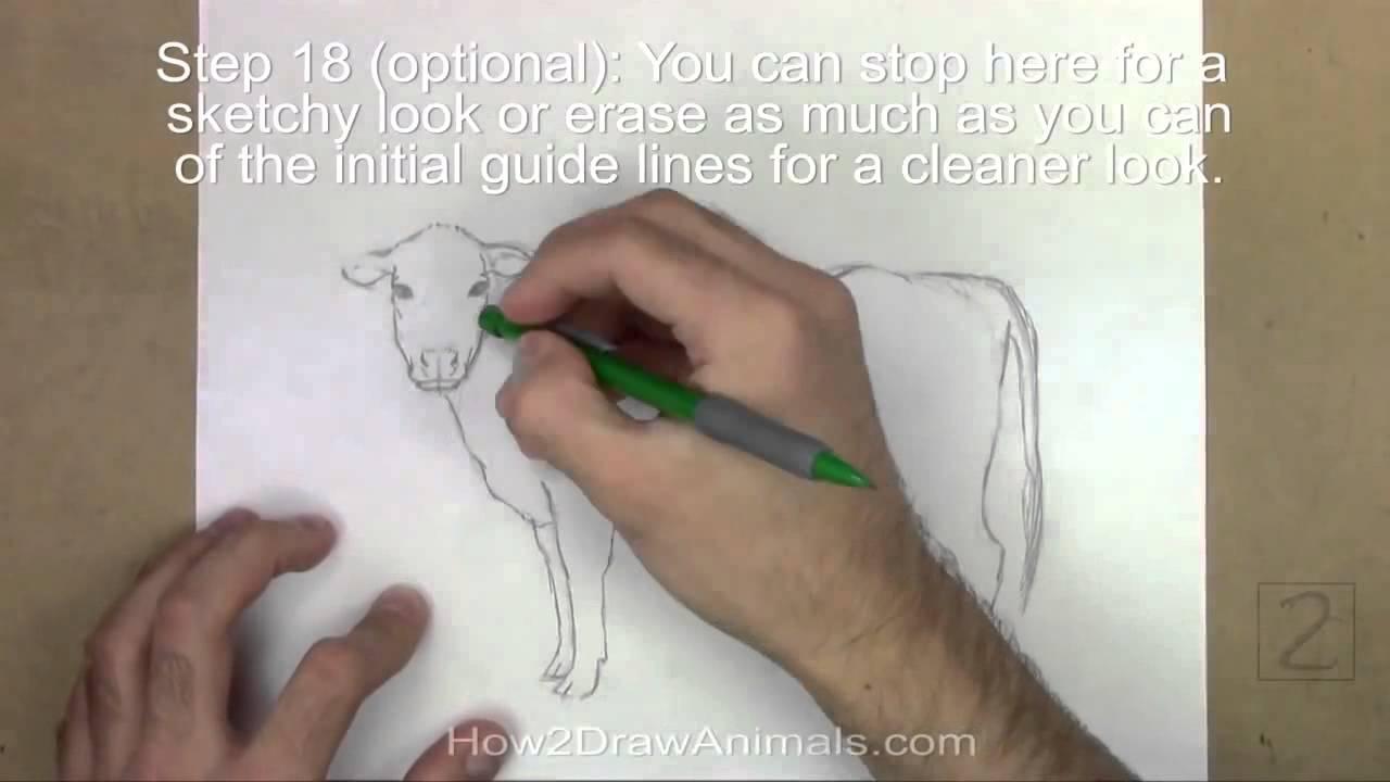 Bir karga çizme dersi çizmek için