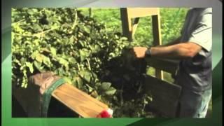 Virginia Farming - January 10, 2014