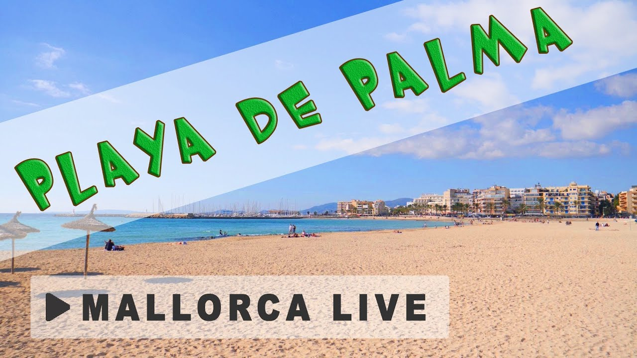 playa de palma balnearios 14 15 der bekannteste strand auf mallorca urlaub in playa de palma