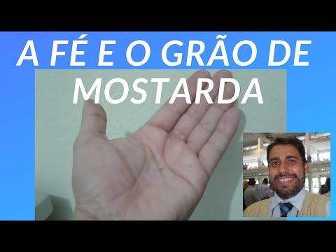 A FÉ E O GRÃO DE MOSTARDA