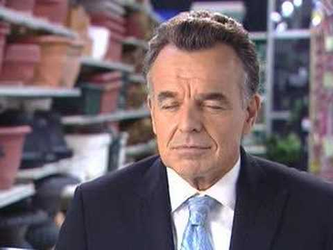 ray wise young