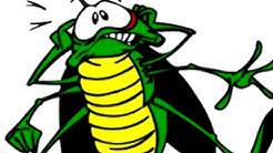 Scorpion Control Ahwatukee AZ 2019 (480-493-5028) Ozone Pest Control