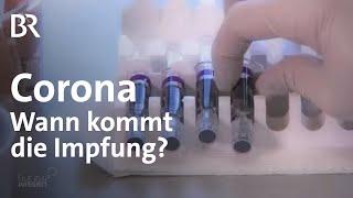 Um die corona-pandemie einzudämmen muss ein medikament oder impfstoff entwickelt werden. auf der ganzen welt arbeiten forscher intensiv an entwicklun...