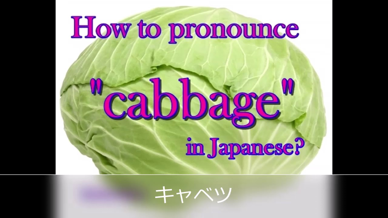 """How to pronounce """"cabbage"""" in Japanese? - YouTube"""