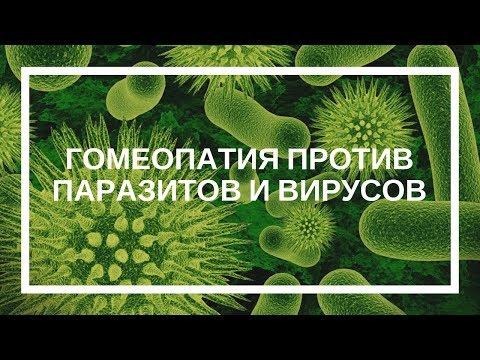 Татьяна Данилова. Гомеопатия против паразитов и вирусов