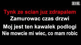 ♫♪♫♪ Mr. Zoob - Mój jest ten kawałek podłogi - Zajebiste karaoke