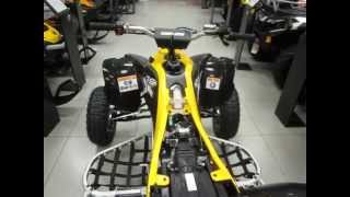 Обзор Can Am DS 450 XMX