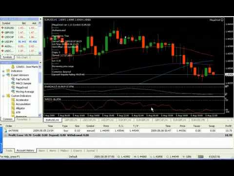 Best forex robot for first time trader