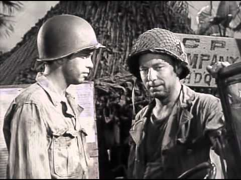 warren oates cockfighter