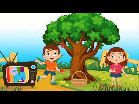 Adunarea  – Clopotelul Magic – cantece pentru copii  – Cantece pentru copii in limba romana