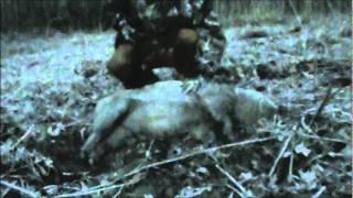 North Carolina Feral Hog Hunt 2/20/12