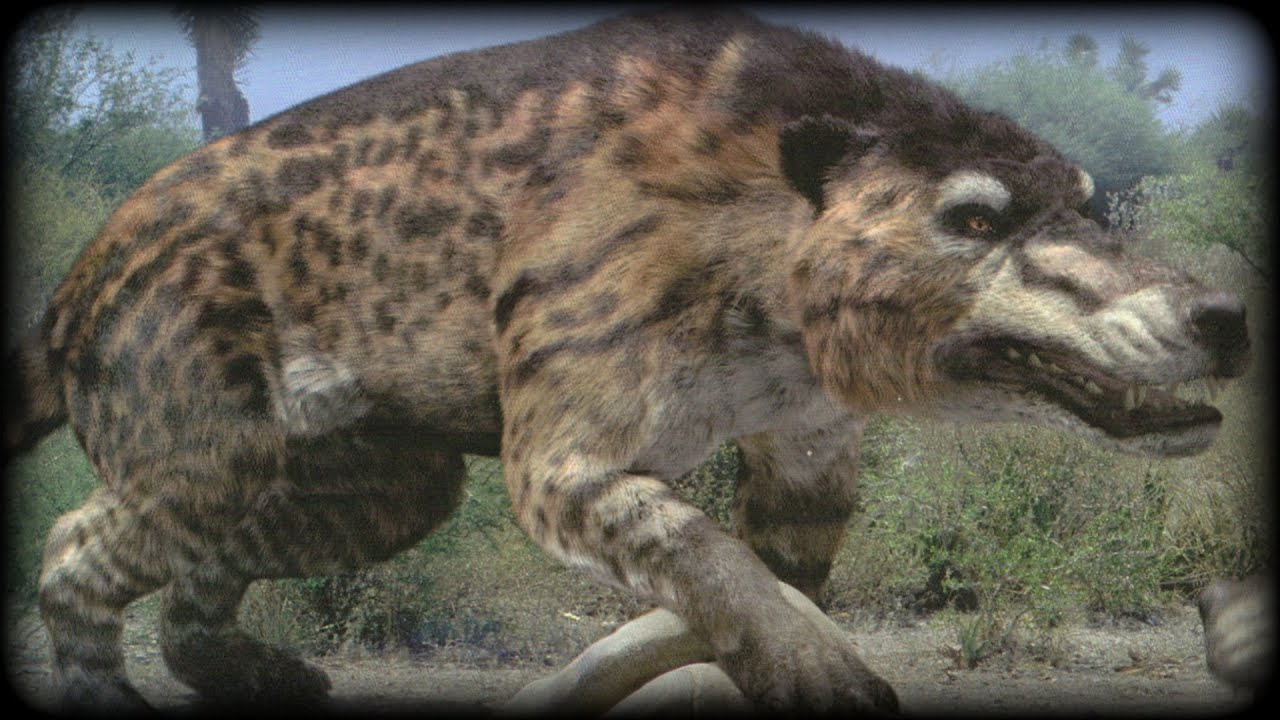 Prehistoric Beasts Andrewsarchus Documentary Largest