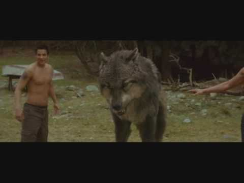 New Moon Sneak Peak (warewolf scene)