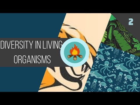 Diversity In Living Organisms - 5 Kingdom Classification