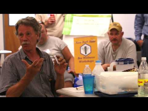 AFB Holst Milk Test Randy Oliver NY Bee Wellness