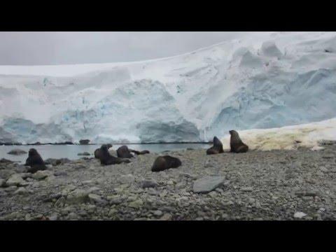 Across the Antarctic Circle 2016