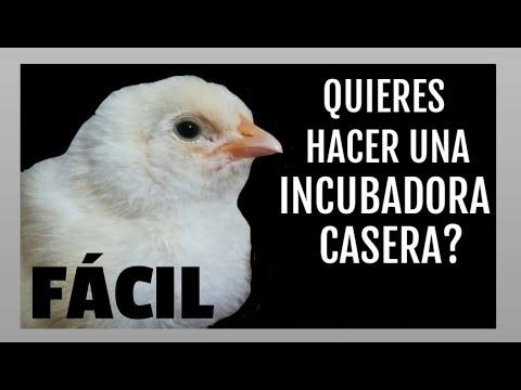 CÓMO HACER UNA MASCARILLA PROTECTORA CASERA CON BOTELLAS PETиз YouTube · Длительность: 14 мин36 с