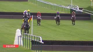 Vidéo de la course PMU PRIX DU CHER