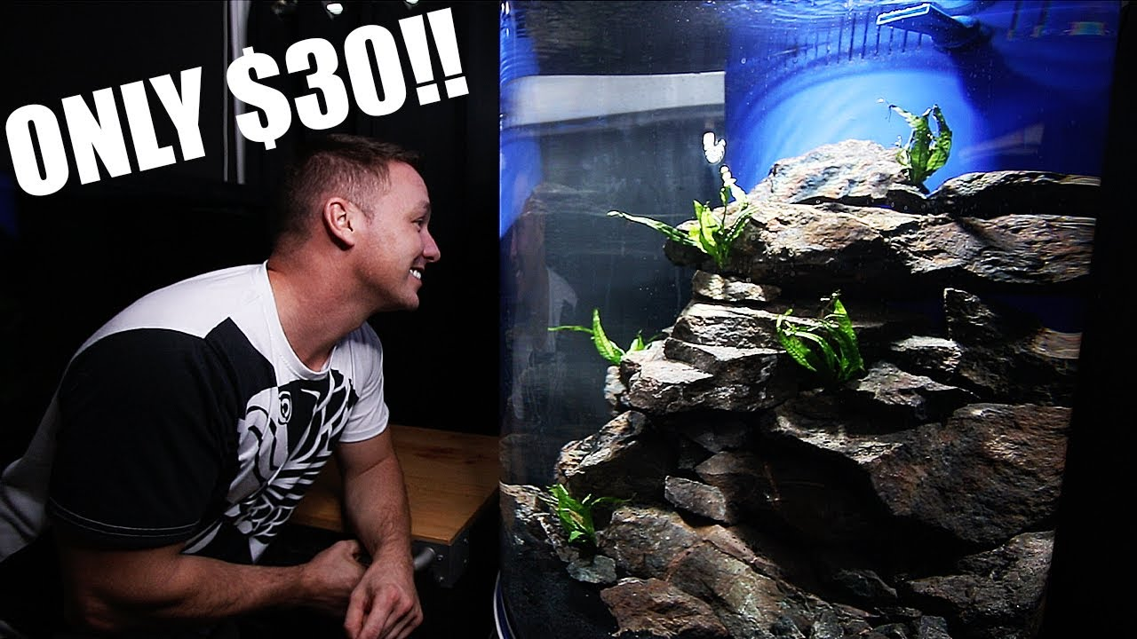 Setting up a cheap aquarium scape