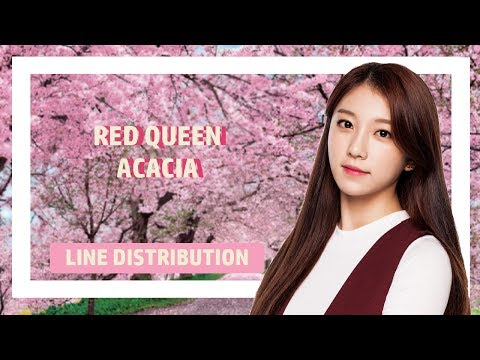 Red Queen - Acacia Line distribution