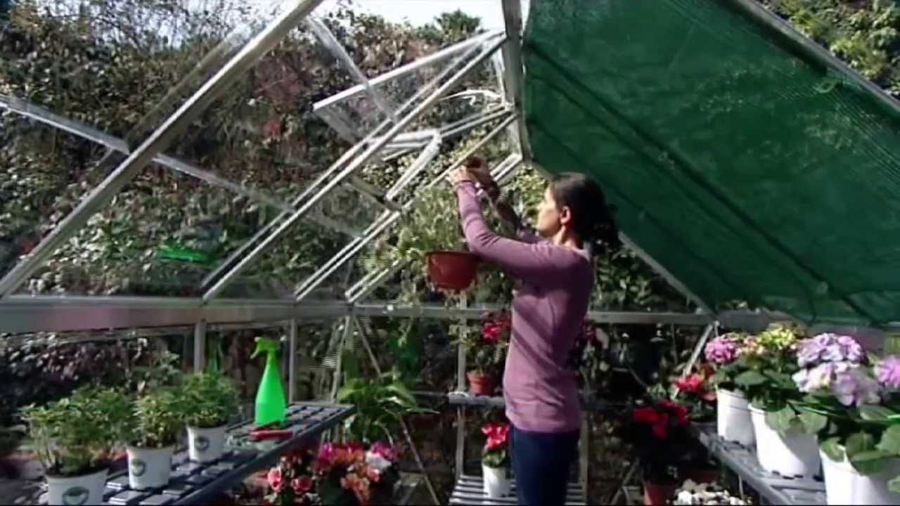 Palram Nature Series Greenhouses - Clear
