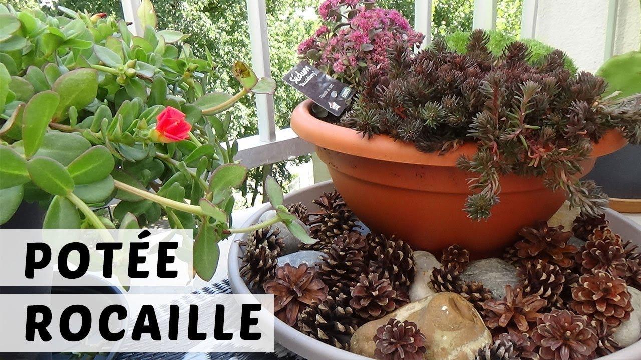 Plante Robuste Pour Terrasse 🌿 potÉe rocaille : des plantes robustes pour le balcon 💪🏻 | tuto  jardinage