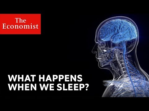 What Happens When We Sleep? | The Economist