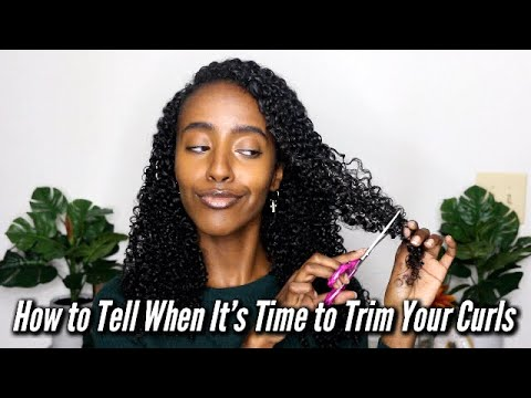 How to Tell When it's Time to Trim Your Curls | My Top 4 Tips | Naturally Curly Hair