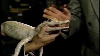 1991 - Ray Mendez Brings Animals (Who Wants Snacks?:)