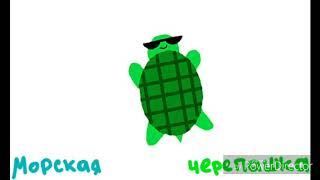 Морская черепашка по имени Наташка