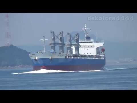 General Cargo「ECO WILDFIRE」
