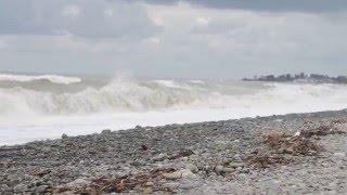 Пляж в поселке Солоники (Лазаревское). Сентябрь. Шторм!(Шторм повыбрасывал на берег