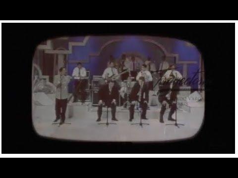 Trayectoria Wilfrido Vargas: Altamira Banda Show, el baile del Perrito y su legado 8/8