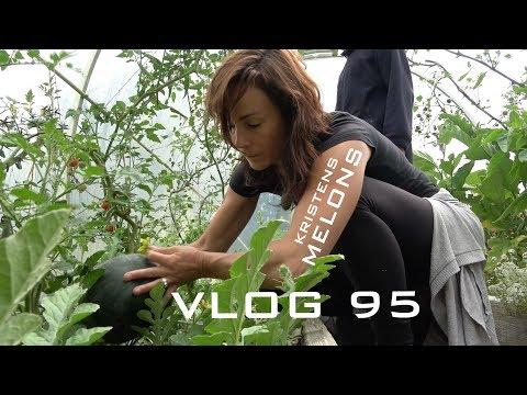 Josh James - New Zealand Adventure Vlog 95 - Kristens Melons and other stuff