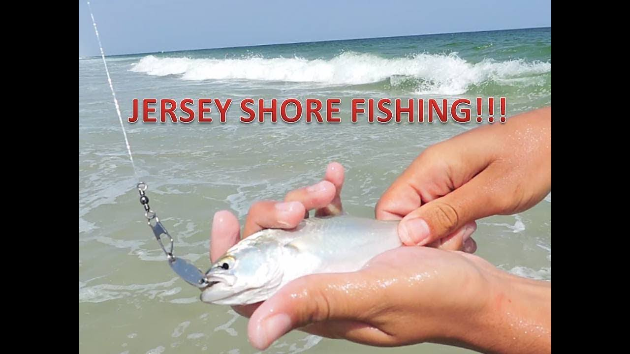 Surf fishing for snappers island beach state park jersey for Nj shore fishing report