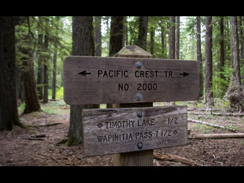 Being Hunted By Bigfoot On The Pacific Crest Trail... How My Best Friend Went Missing!