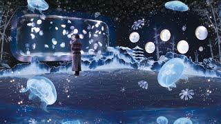 冬を楽しむインタラクティブアート「雪とくらげ」 京都水族館【公式】