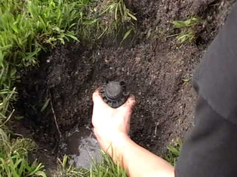 How To Replace A Sprinkler Head You